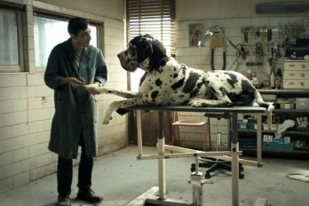 Ciné-Club: Dogman