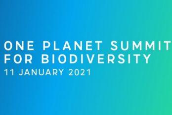 Biyoçeşitlilik için : One Planet Summit – 11 Ocak 2021