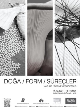 EXPOSITION : NATURE, FORMES, PROCESSUS